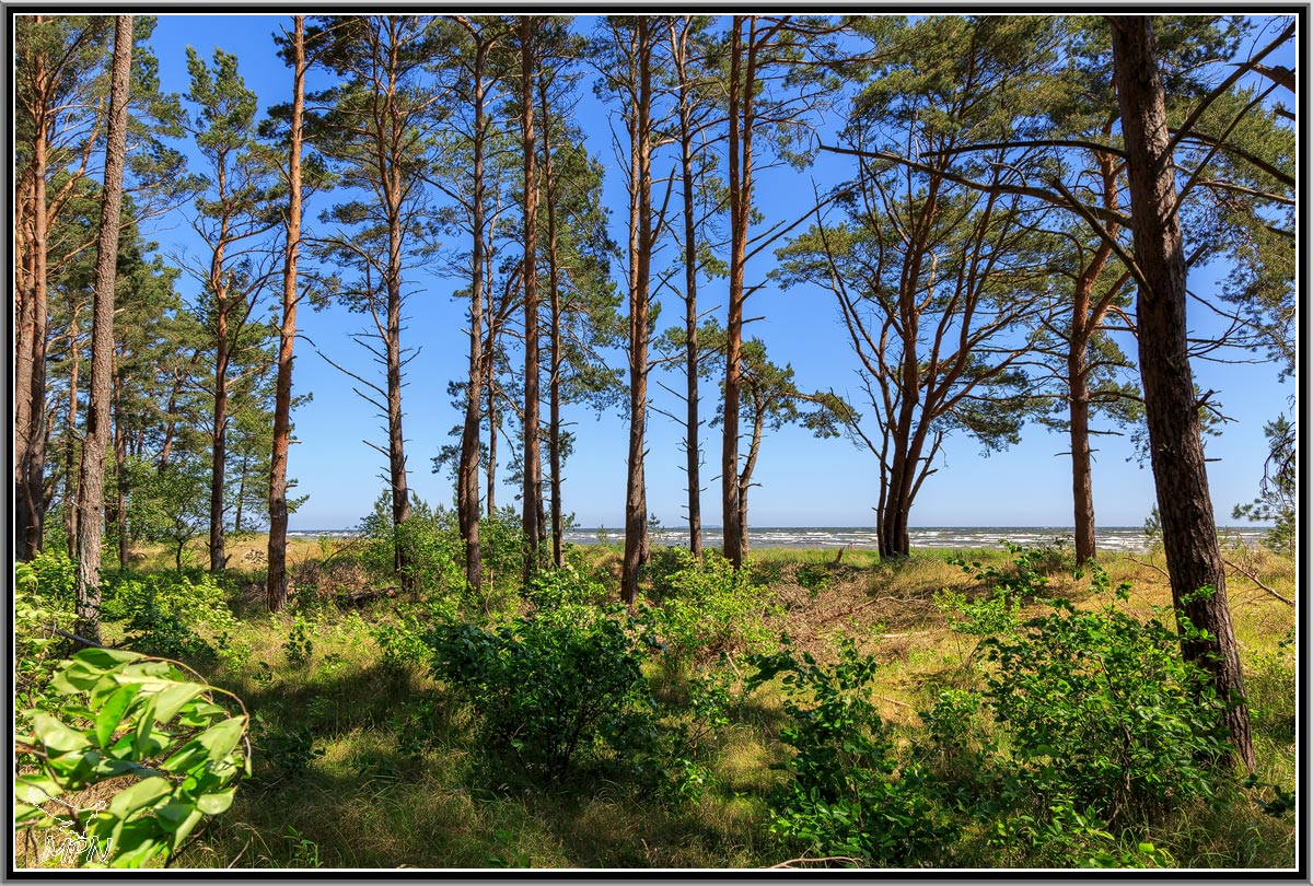 mpn-usedom-0027
